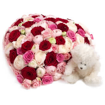 Bed of Roses Teddy Giftset