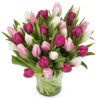 skicka blommor malmö billigt