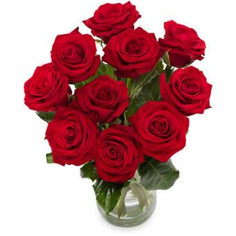 Röda rosor
