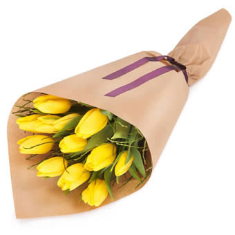 Wrapped yellow tulips