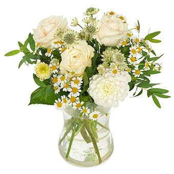 Vaniljvita rosor