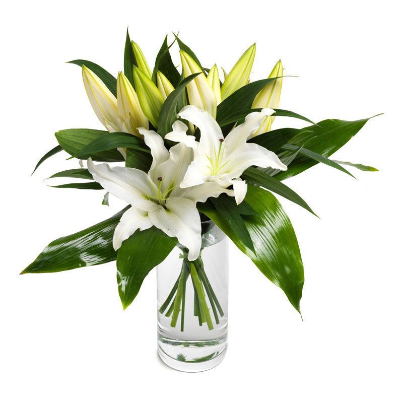 Wonderfully white lilies
