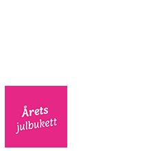 Julsaga _overlay