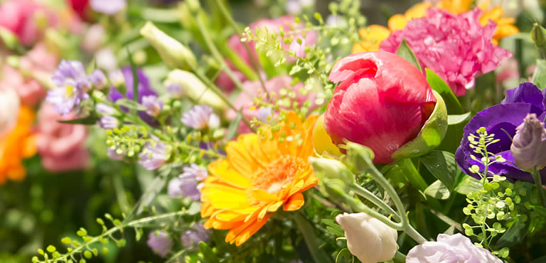 Skicka blommor till Uppsala