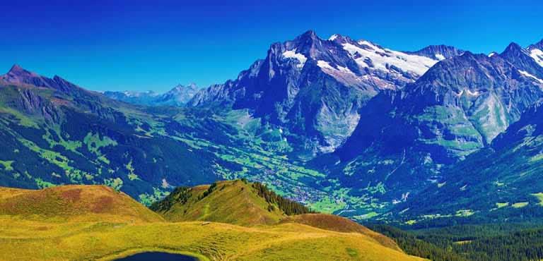 Skicka blommor till Schweiz