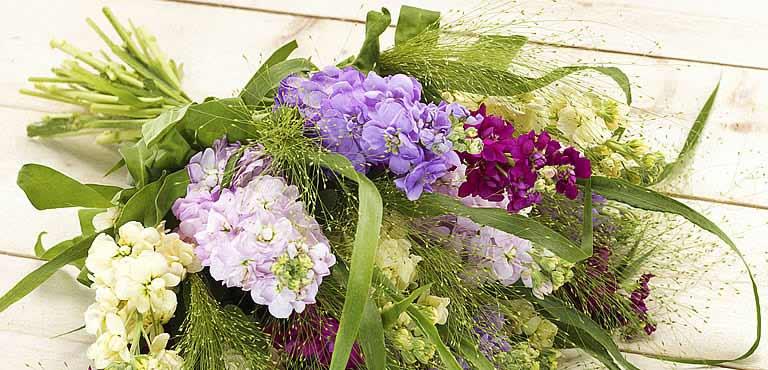 Säg tack med blommor