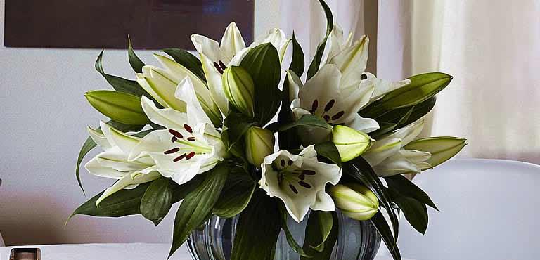 Skicka liljor