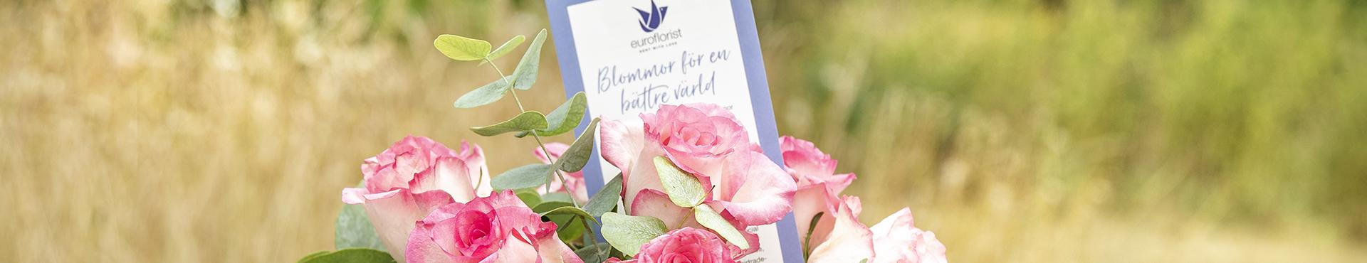 Tips och inspiration med FloristFia