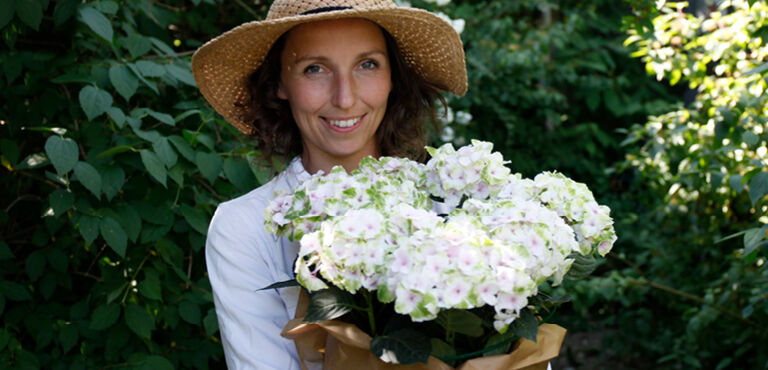 Krukväxter att skicka som blombud