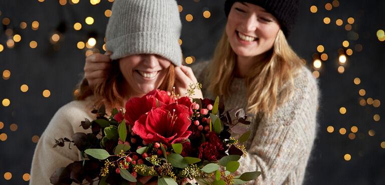 Alla julblommor