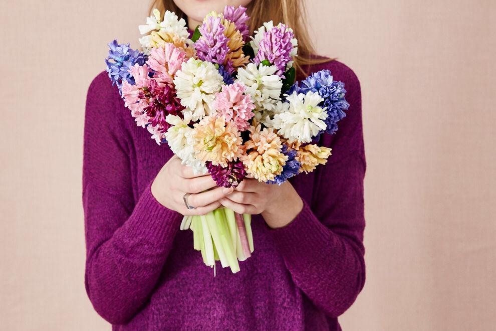 En person i lila tröja har händerna fulla av en stor färgsprakande hyacintbukett som går i blått, rosa, lila, aprikosrosa och vitt