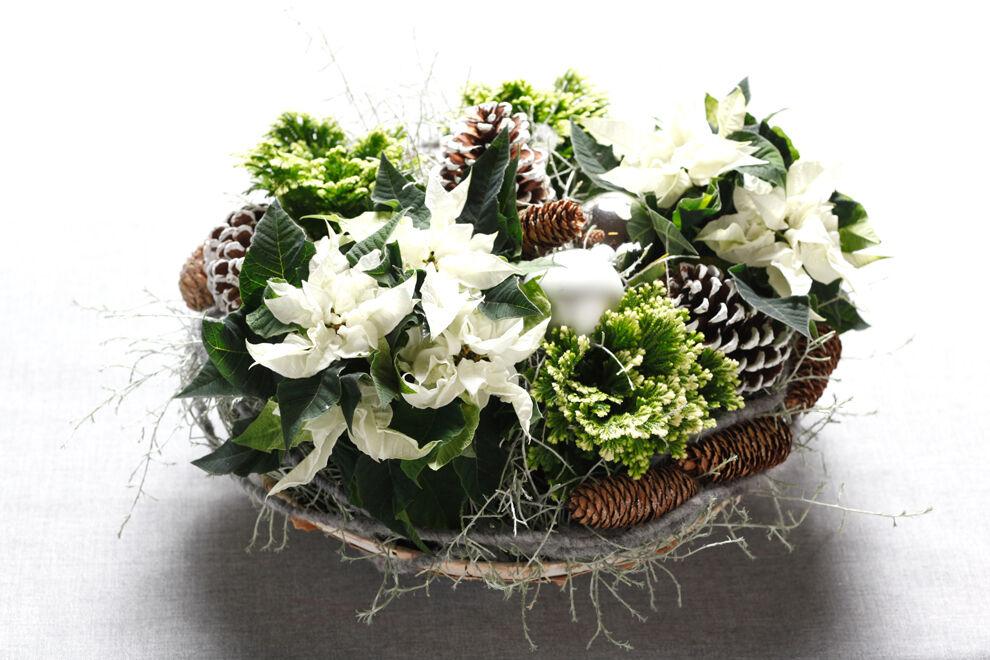 Ett zinkfat med en julplantering bestående av vita julstjärnor, gröna blad, kottar och fönsterlav.