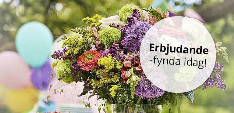 Beställ blommor med rabatt, leverans idag